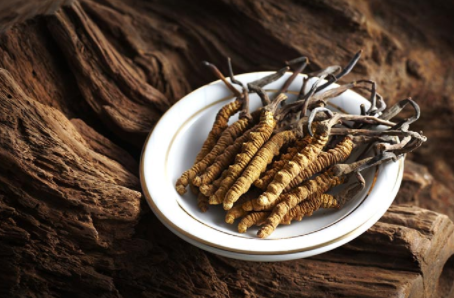 "How is the real properties of ""Cordyceps""?"